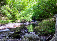 Watersmeet (ihoskins57) Tags: devon trees eastlynriver landscape ©nigelhoskinsphotography river watersmeet northdevondistrict england unitedkingdom gb