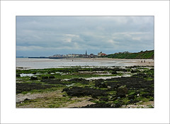Bridlington, Yorkshire (prendergasttony) Tags: sea sand beach nature bridlington yorkshire england outdoors water shore town seaweed rocks sky clouds elements nikon d7200 northsea horizon blue wind turbines church spa fishing bempton
