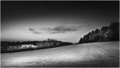Cloud (Nordtegn) Tags: landschaft landscape paysage feld field champ wald bois forest woods wolke clouds cloud wolken nuage nuages nb noir noiretblanc blanc 169 outdoor fotorahmen einfarbig sonyalpha7r sony zeissvariotessar2470f4zaoss bw black blackwhite white sw schwarz schwarzweis schwarzweiss schwarzundweis weis weiss blanconegro zw zwart zwartwit wit mono monochrom monochrome monochromatic himmel ciel sky