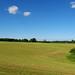 Tukums_vicinity-Stubble_field