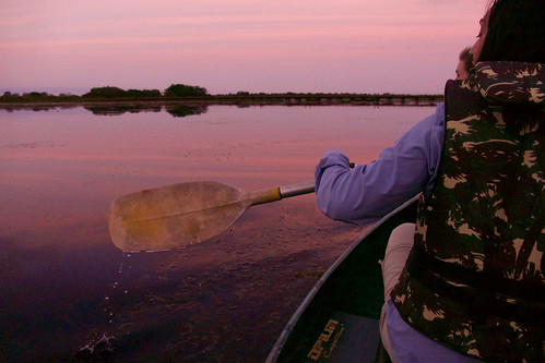 brazil-pantanal-caiman-lodge-evening-canoe-trip-copyright-thomas-power-pura-aventura