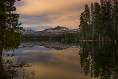 Evening colors (Middle aged Nikonite) Tags: wrights lake california landscape outdoor nikon d7200 forest trees water sunset evening reflection nature peaceful colors