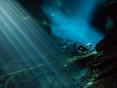 Following the Line (altsaint) Tags: 714mm chacmool gf1 mexico panasonic cavern caverndiving cenote scuba underwater