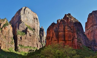 Inside Zion National Park