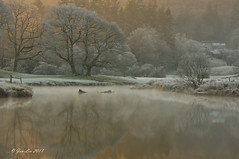 Winter Reflections (jeanette_lea) Tags: river brathay elterwater the lake district cumbria sunrise dawn reflections frost mist trees colours water