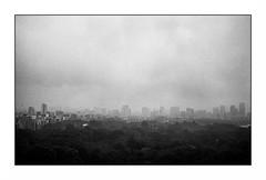 Tokyo - Shinjuku (Punkrocker*) Tags: leica m7 summicron asph 35mm 352 film kodak trix pushed 800 nb bwfp street city people tokyo shinjuku japan japon nihon travel