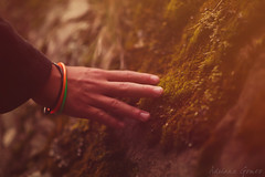 Earths textures (Adriana Gomez (Adriana Varela)) Tags: boy child childhood hand touch feel texture moss rock earth nature forest woods
