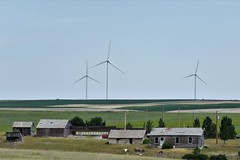 A More Promising Future (Patricia Henschen) Tags: pawneepioneertrails scenicbyway grassland grasslands pawneenationalgrasslands usda forestservice weld county weldcounty backroads colorado easternplains windmill windpower ruin ruins abandoned autotour route homestead ranch