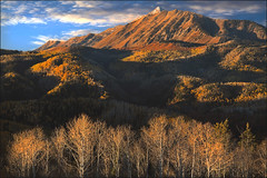 Autumn Morning on Mount Nebo (Utah Images - Douglas Pulsipher) Tags: mountnebo autumn fallcolors aspen aspens peak peaks summit wasatchmountains mountain plateau mt mts utah ut wilderness leaves color colorful decidious bare canyons scenic massif range forest forests forested evergreens pines pinetrees sprucetrees spruces conifer conifers highaltitude morning sunrise