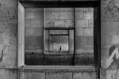 4683 (explored) (.niraw) Tags: brüssel strasenfotografie mann tunnel bw niraw rahmen garedunord belgien mitte
