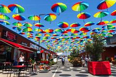 Umbrellas 1 (Oktay A) Tags: nxmini 17mm tuzla viamarin istanbul market bazaar friday seller perspective outdoor tent tente samsungcamera turkei turkey türkiye street streetphotography sokak umbrella umbrellas shopping