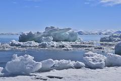 DSC_0391 (JillScoby) Tags: canada nunavut pondinlet byoletisland icefloe floeedge arctic ocean ice snow