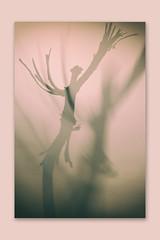 Scared of my own shadow (M. Van Cauteren) Tags: stick pentaxk1 studio shadow figure