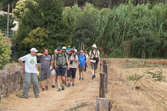 08072017-_POU7986 (Salva Pou Fotos) Tags: 2017 ajuntament fradera grupsenderista observatorifauna pont aiguamolls barberàdelvallès caminada pou
