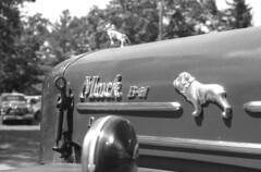 mack truck (bergytone) Tags: film bw blackandwhite olympus om2n om omseries zuiko kentmere 100 xtol self developed mack truck bulldog logo