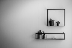 Objects on the wall (stefanfortuin) Tags: objects objecten cactus bnw bw black white home house inside summer sun friesland fryslan weststellingwerf wolvega nederland netherlands structure metaal metal abstract
