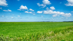 green and blue (robvanderwaal) Tags: flat groen landscape wolk fotoclub nederland hdr rvdwaal clouds blue 2017 vlak landschap blauw cloud netherlands robvanderwaalphotographycom minimalism green minimalistisch veld wolken field