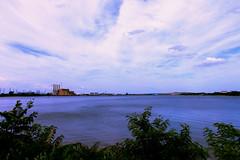 What the Water Gave Me (julianaluciana) Tags: nj centraljersey sewaren perthamboy statenisland waterfront oceanscape landscape sky