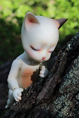 Behind the tree (Darkshiney) Tags: pipos baha bjd