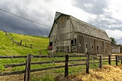 Weathered Barn in the Palouse (Alan Amati) Tags: amati alanamati america american usa us wa washington pacificnorthwest nw northwest farm barn weathered fence agriculture palouse thepalouse landscape rural weather spring colfax pullman country topf25 topf50 topf75 topf100 topf125