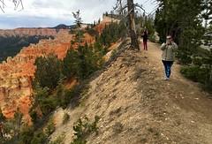 Utah - Bryce Canyon Nation Park - Ponderosa Point - Agua Canyon Trail - Erin (jared422_80) Tags: utah bryce canyon may 2016