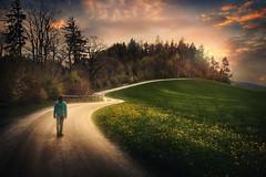 Wegsunter (Chrisnaton) Tags: path walking nature girl trees hill forestedge eveningmood eveningsky journey