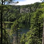 Black Forest (schwarzwald) Germany thumbnail