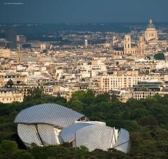 LVMH (Julianoz Photographies) Tags: capitale europe paris îledefrance architecture jussieu panthéon saintsulpice lvmh julianozphotographies france idf 75 bernardarnaud