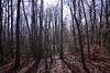 fullsizeoutput_78 (springday) Tags: freezeout freezeout2017 canon photography sprinday dayspring dayspringcreations camping trip good times hiking winterhiking goodtimes pa pennsylvania hellyeah fuckyeah cold icy