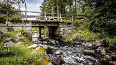 _61A4241.jpg (fotolasse) Tags: stenfors natur nature sweden sverige småland kronoberg å vatten water river bäck sten grönt green canon hdr 16x9 tingsryd