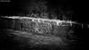 Il y a des mystères que l'esprit ne fait qu'entrevoir et que les siècles peuvent éclaircir qu'en partie (photos.osmose) Tags: châteaux mystère mystérieux murs ambiance zenarbresparcboisbonsaïcampagne évasion extérieur regard rêverie temps mystique paysage paysageancien insolite imaginaire ombrelumièreinsolitetempssoleil ombragé ombre promenade historique histoire lumière lieux lieuxhistoriqueslieuxtouristiquehistoiredefrancechâteauxloirelacforetétangs monochrome exploration expression composition noirblanc nature noiretblanc