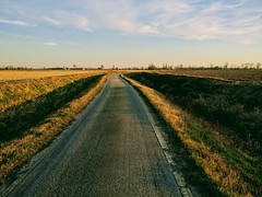 IMG_20170225_173502 (storvandre) Tags: storvandre lombardia lombardy countryside campagna nature landscape road zibido milano parco agricolo