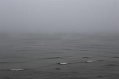 it comes from north (Mindaugas Buivydas) Tags: lietuva lithuania color autumn fall october fog mist morning seaside balticsea pajūrioregioninisparkas pajūrisregionalpark giruliai minimal minimalism mood moody mindaugasbuivydas