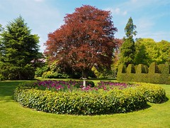 P5102570 (simonrwilkinson) Tags: nymans nationaltrust haywardsheath westsussex handcross garden landscape trees
