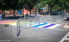 2017.06.10 Painting of #DCRainbowCrosswalks Washington, DC USA 6384