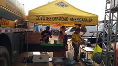 Coyotes na Fenajeep 2017.
