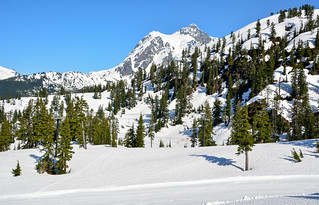 Mt. Baker Ski Area - Snoqualmie National Forest, Washington (Explored) Thank-you!