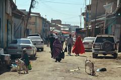 Wajaale (Somaliland) - Market street (Danielzolli) Tags: somalia somalie somali soomaaliya soomaalia somalië somalistan сомалија сомалия харгейса hargeisa hargeysa somaliland somalilandia сомалиланд soomaaliland grenze frontiere confine border frontier frontiera hranice granica vama cordon kordon hudut граница рубеж межа mercado markt market mercato marché rynek targ targowisko trziste trh trg rynok stand stall basar bozor bazaar bazar рынок базар souq souk suq suk shuk wajaale togochale togwajaale