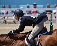 Poetry in motion (dqpagan) Tags: devon pa motion beauty rider riding equestrian usef jumping jumper horseshow horse