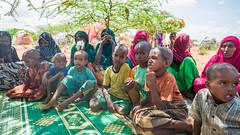 L1020846 (UNICEF Ethiopia) Tags: somali ethiopia idp internallydisplacedpeople drought pastoralist