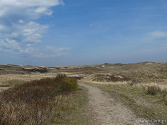 Dunes, Noordhollands duinreservaat (Nelleke C) Tags: 2017 noordhollandsduinreservaat duinen dunes landscape landschap nederland netherlands noordholland