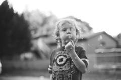 Gone with the Wind (Gabby Pike) Tags: film analog photography bnw monochrome black white kodak tmax 400 canon ae1 portrait portraits portraiture child kid boy dandelion seeds wind