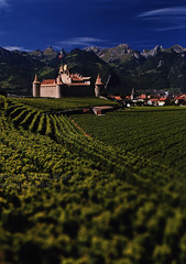 Pays-d'Enhaut, Tip Top;  Aigle, Leysin, Col des Mosses, Chateau-D'Oex, Rougemont, Rossiniere; 2016_2, Waadt / Vaud, Lake Geneva, Switzerland (World Travel library - The Collection) Tags: paysd'enhaut 2016 green perfect beautiful brilliant colorful colours colors vaud waadt switzerland schweiz suisse svizzera world travel library center worldtravellib helvetia eidgenossenschaft confédération europa europe papers prospekt catalogue katalog photos photo photograph picture image collectible collectors ads holidays tourism touristik touristische trip vacation photography collection sammlung recueil collezione assortimento colección gallery galeria broschyr esite catálogo folheto folleto брошюра broşür documents dokument