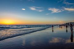 A stroll along the beach (Tony_Brasier) Tags: holiday spanish hot sea seagull lovely location nikon walking swim bluesky sunset sky sun 16mm85mm fun flickr spain cadiz d7200 fishing