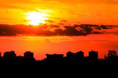 (A Great Capture) Tags: skyline buildings silhouette toronto riverdalepark sunset city downtown lights urban light sun sunny sunshine fire atardecer cityscape urbanscape eos digital dslr lens canon 70d towers tower sky himmel clouds nuvole wolken nubes cloudy outdoor outdoors bright ig agreatcapture agc wwwagreatcapturecom adjm ash2276 ashleylduffus ald mobilejay jamesmitchell on ontario canada canadian photographer northamerica torontoexplore spring springtime printemps 2017