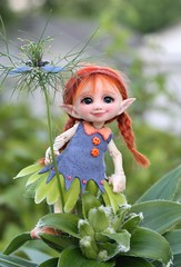 In her element (Desertmountainbear) Tags: realpuki toki fairyland fairylanddoll fairy flowerfairy elf