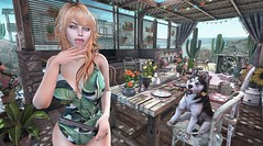 Hot Sauce (clau.dagger) Tags: ane swimsuit theliaisoncollaborative drd garden pergola barbecue furniture decor summerfest secondlife tram insol lelutka slink xin milkmotion nantra