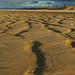 Sand scape