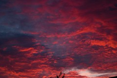 Glorious Cornish Sunset (m barraclough) Tags: cornwall canon100d canon nature clouds sun setting evening sky red