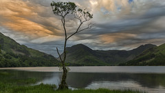 Buttermere Sunrise. Lake District, England (RenaldasUK) Tags: canon 247028 6d england uk lakedistrict summer sunrise cloud lake tree lonetree landscape polarizer lee leefilters moon buttermere mountains